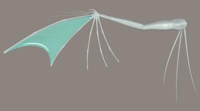 Drachenflügel 2